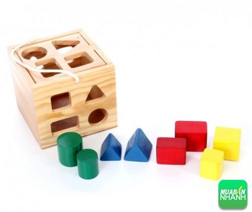 Các loại nhà/ hộp thả hình khối